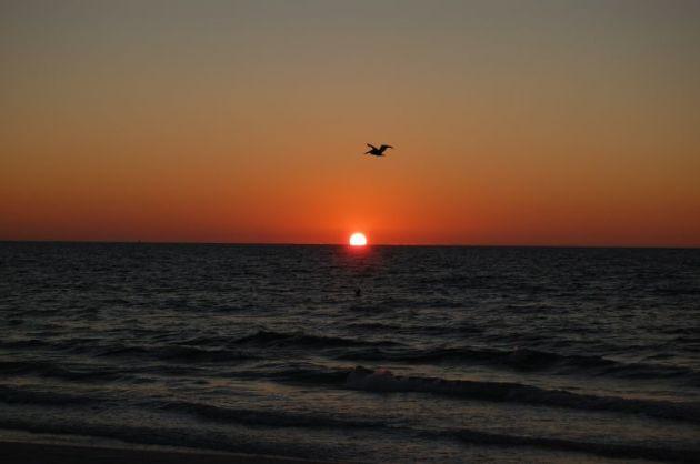 sunsetflorida4